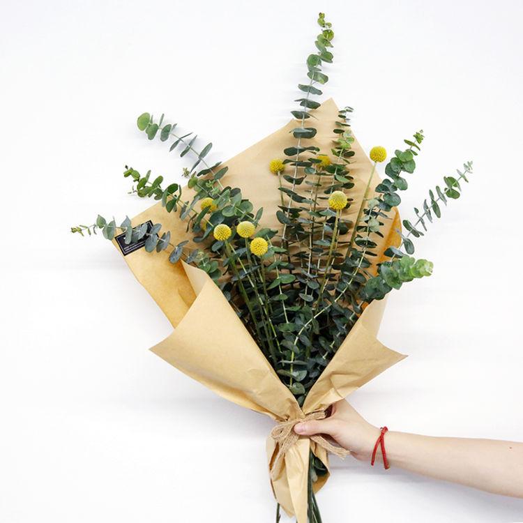 金槌花,学名澳洲鼓槌菊,拉丁名Craspedia globosa,菊科,国内多称呼为黄金球。原产自澳大利亚,多年生[1] 草本花卉,常作一年生栽培,叶窄披针形,有蜡质,被灰白色柔毛,叶色灰绿、莲座化基生,花茎直立少分枝,顶生金黄色的球形花,由多数管状花组