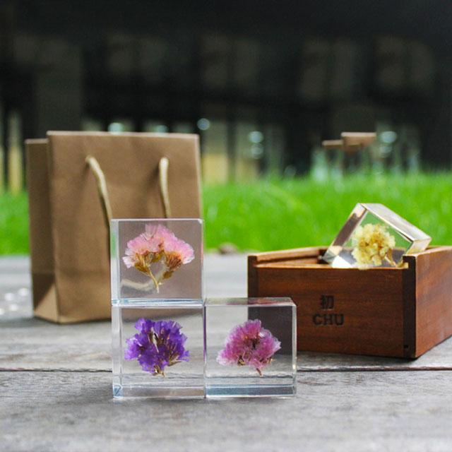 创意水晶植物立方体标本图片