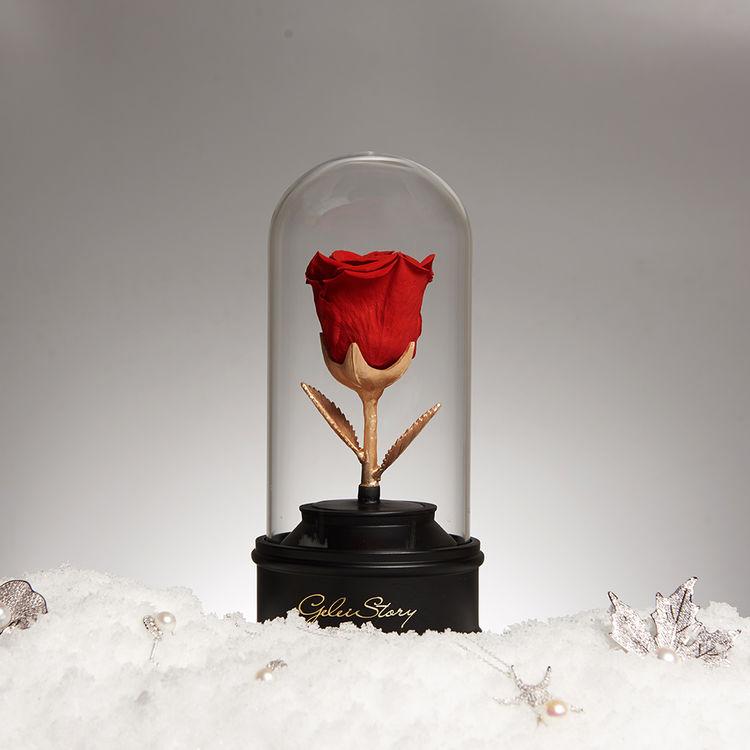 为你心动 为你旋转,七夕爱礼 | 红玫瑰的永生花,被偏爱的都是今生挚爱