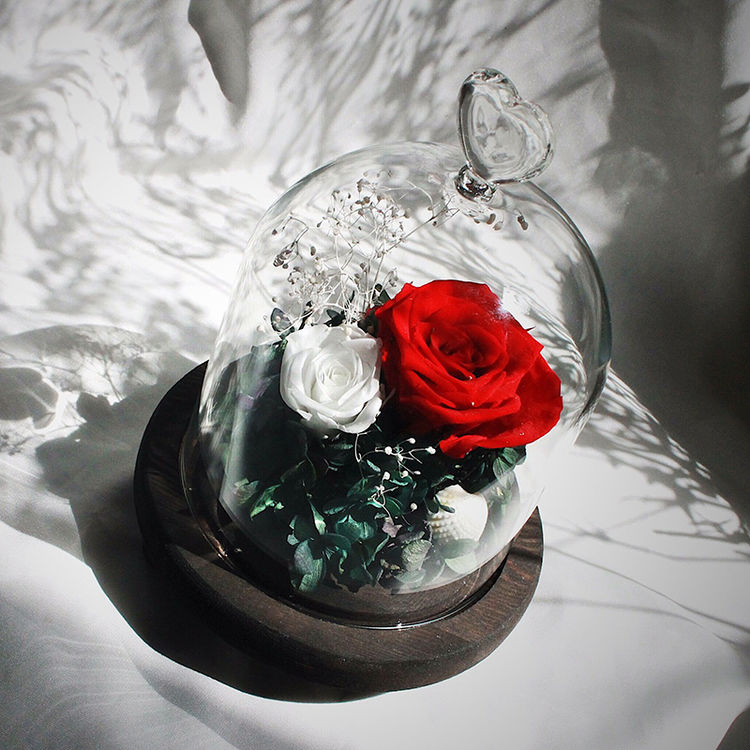 进口永生花礼盒diy玻璃罩