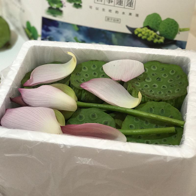 【原产地】水果莲蓬16朵/盒 顺丰包邮