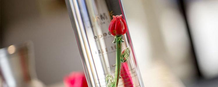 一杯情长,献给爱人一朵永不凋谢的玫瑰