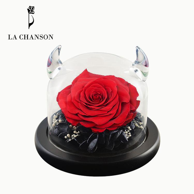 小恶魔的玫瑰花永生花景观瓶