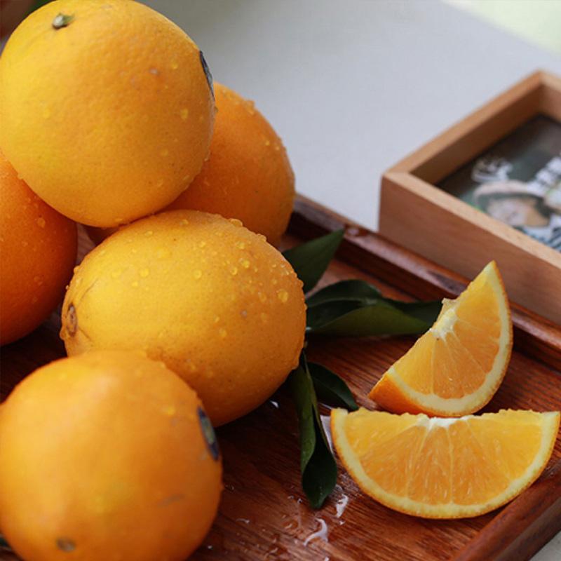 朵儿赣南脐橙5斤/10斤装 橙心橙意的新年礼