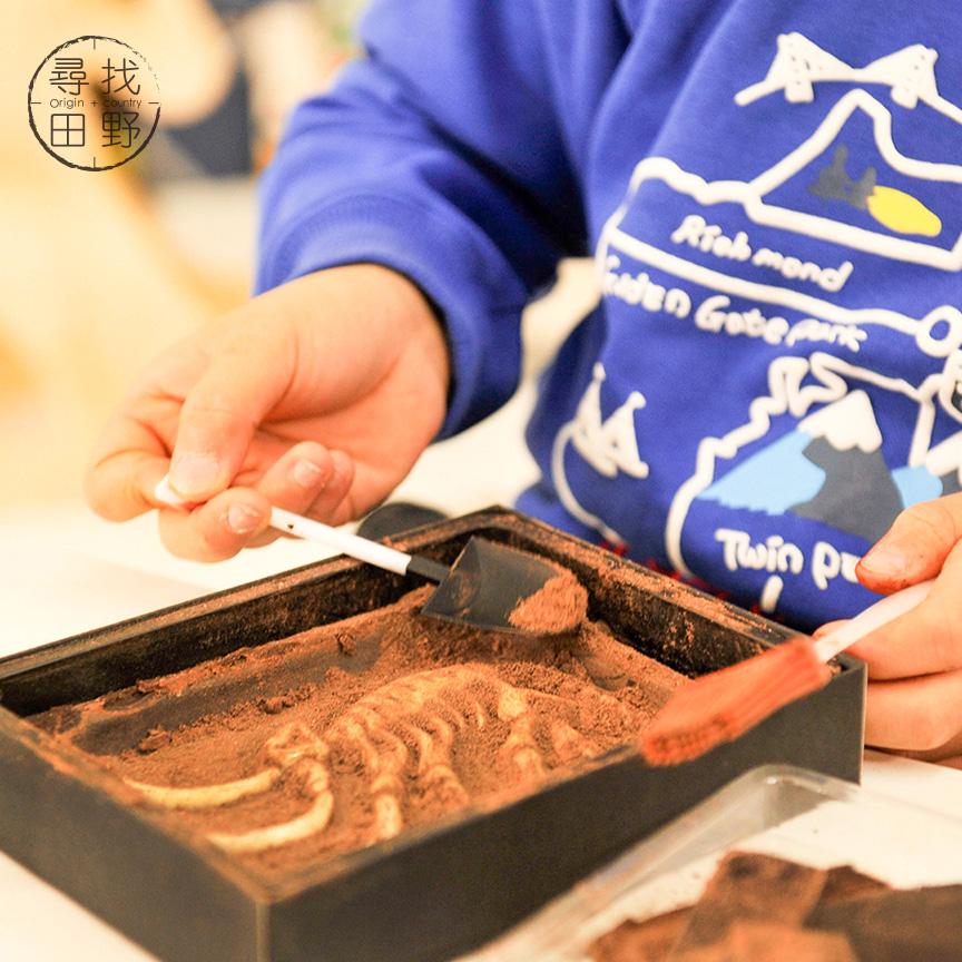 恐龙化石考古巧克力创意礼盒 新年装抢先上市