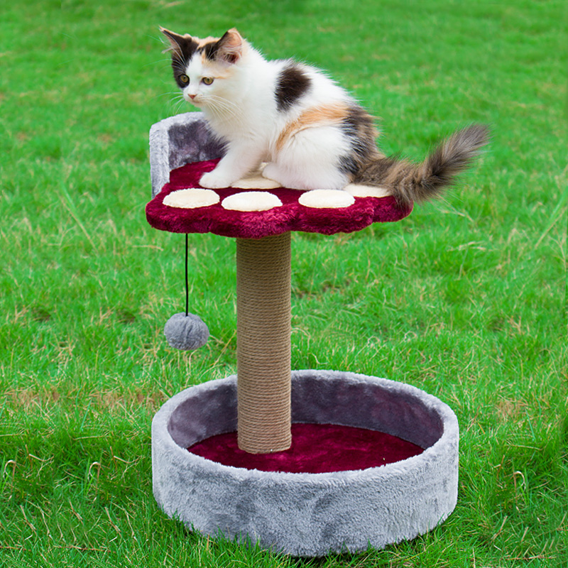小型猫爬架