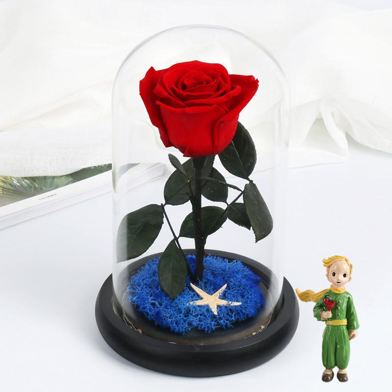 小王子的玫瑰花