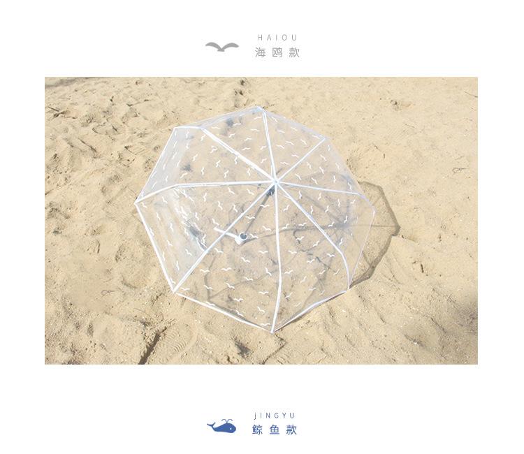 七行全自动透明雨伞
